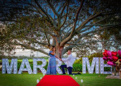 Marry Me Proposals Carpet and Sign